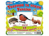 Картки міні Тварини та птахи УкраїниНОВЫЕ ТМРАНОК