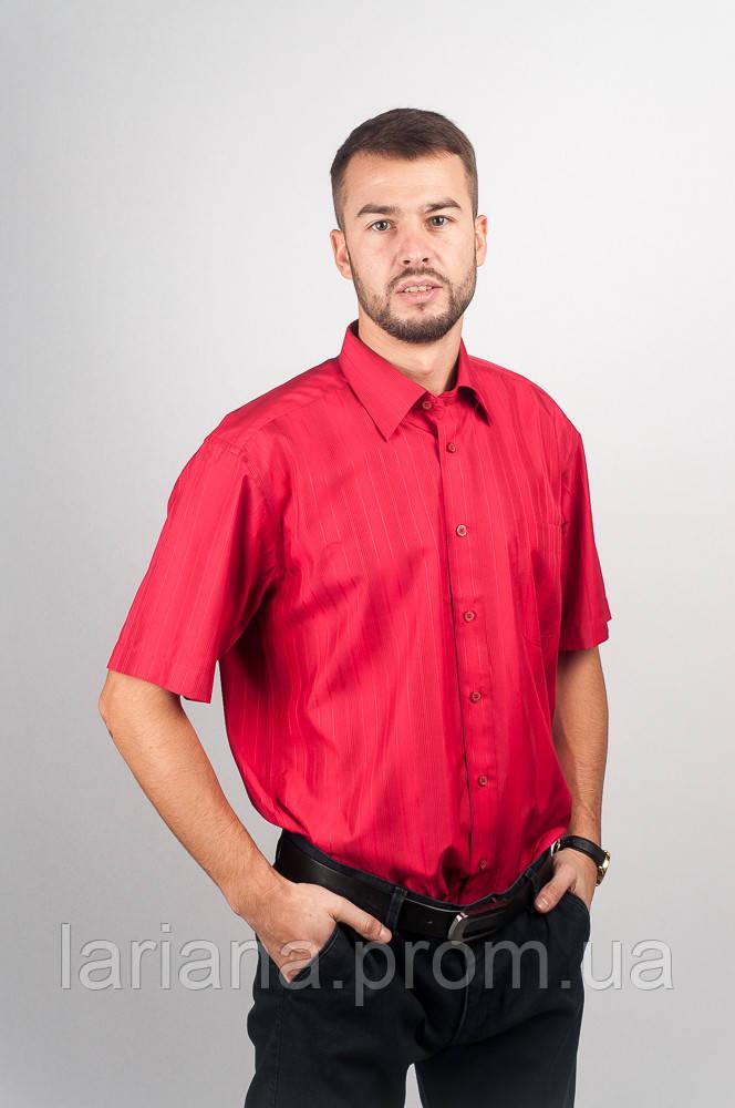 Рубашка Fra №1039-2 цвет Красный