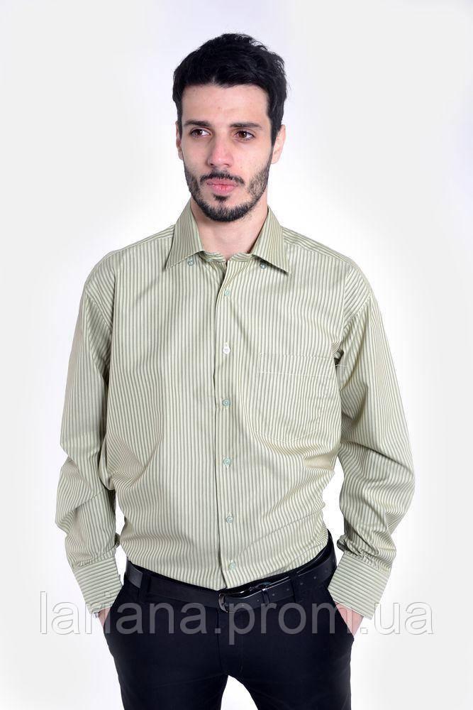 Рубашка 9010-17 цвет Оливковый