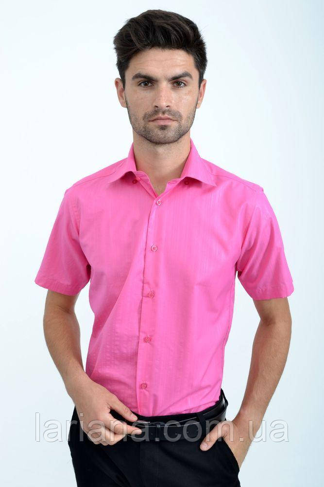 Рубашка 889-2 цвет Розовый