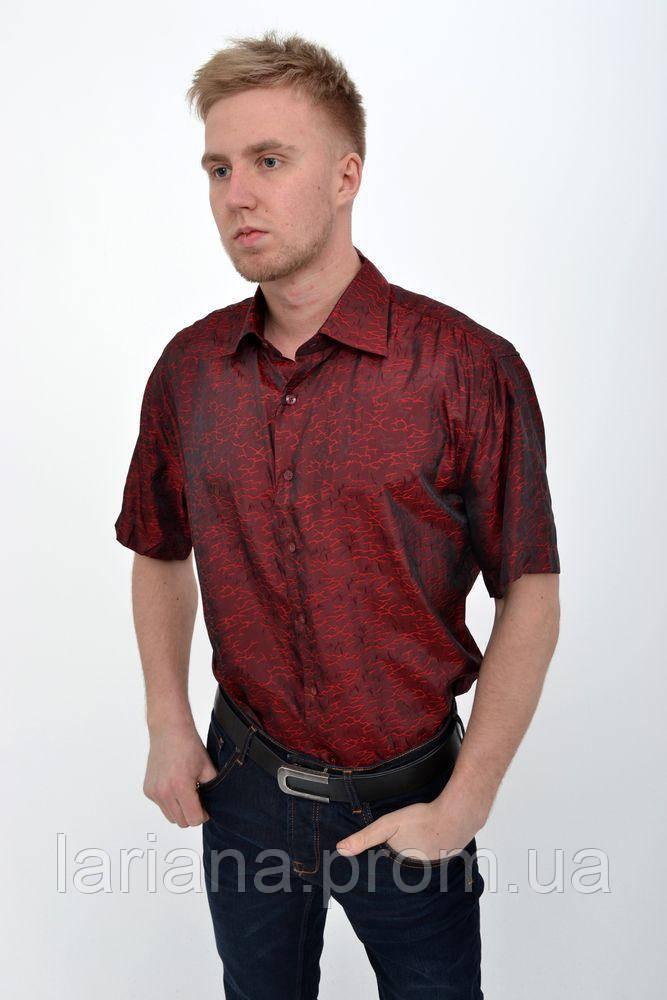 Рубашка Pas 888-1 цвет Красно-бордовый