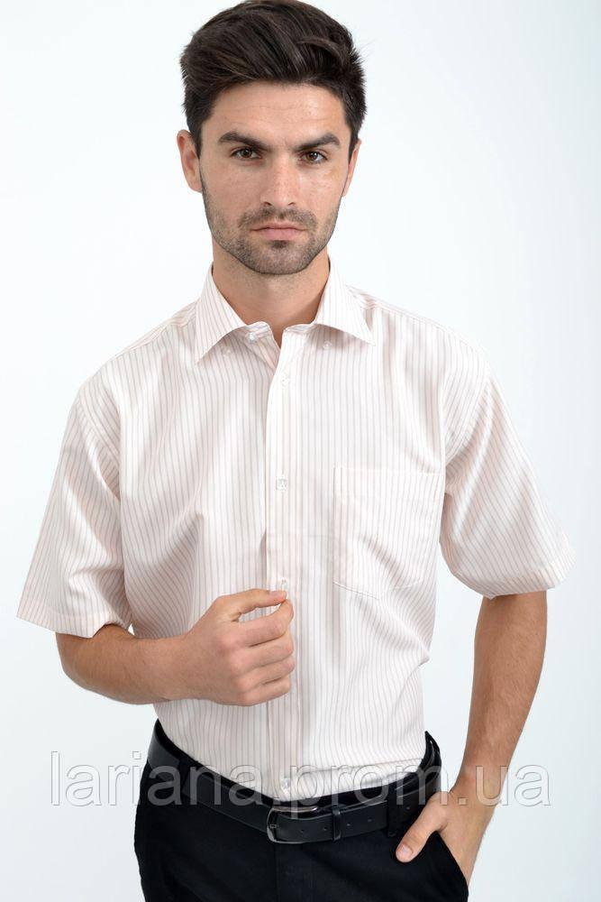 Рубашка 113RZeg006 цвет Молочно-серый