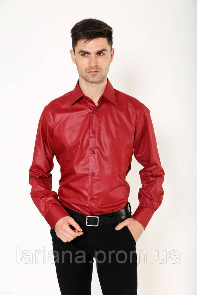 Рубашка 113RPass25 цвет Бордо