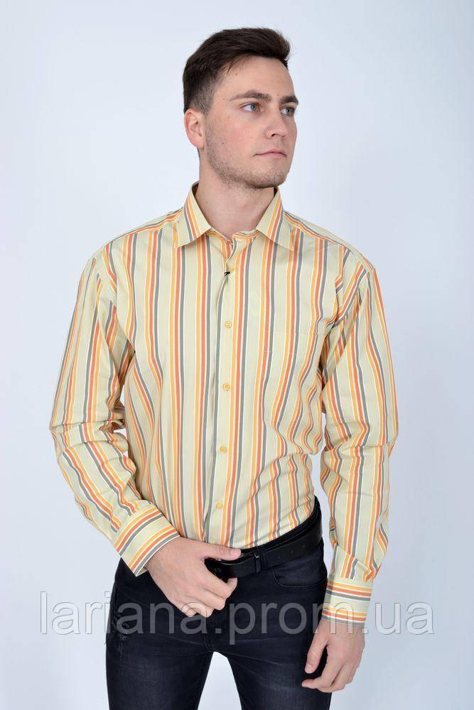 Рубашка 113RPass22 цвет Светло-оливковый