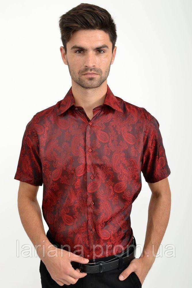 Рубашка 113RPass005 цвет Бордо