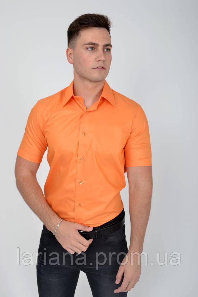 Рубашка 113RPass004 цвет Оранжевый