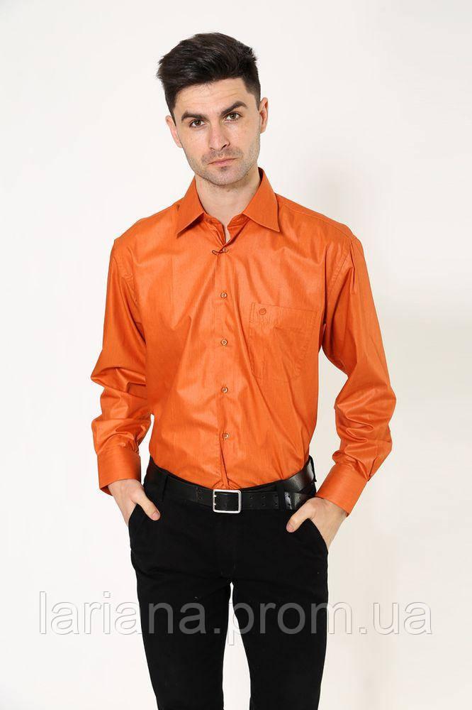 Рубашка 113ROM102 цвет Терракотовый