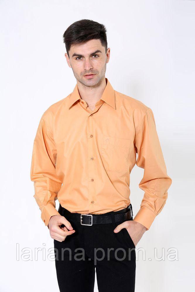 Рубашка 113ROM102 цвет Светло-коричневый