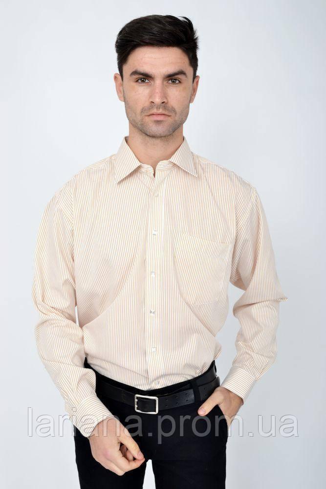 Рубашка 113RHAG19 цвет Молочно-коричневый
