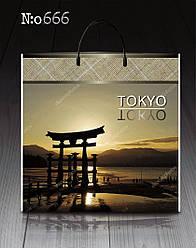 """Пакет с пластиковой ручкой """"Токио"""" без ручки (10 шт)"""