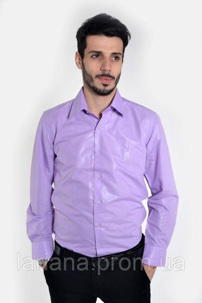 Рубашка мужская 103RMB048 цвет Сиреневый