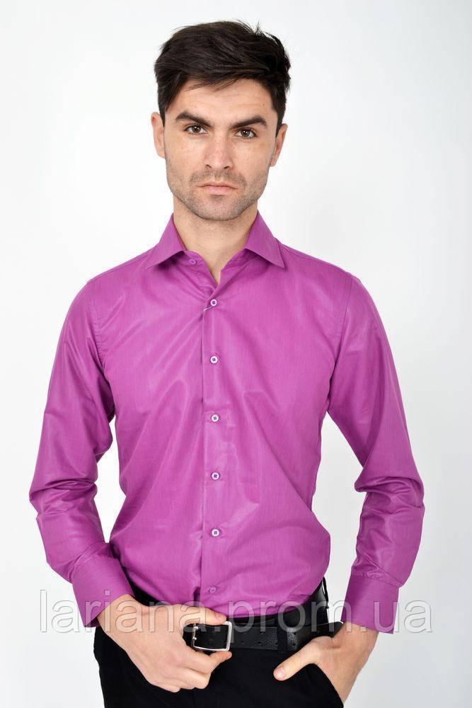 Рубашка мужская 103RMB045 цвет Фуксия