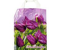 """Пакет ламинированный с петлевой ручкой м """"Фиолетовые тюльпаны"""" 2444  (23х29) 50мк ДПА (50 шт)"""