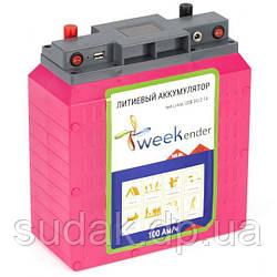 Литий-ферумный аккумулятор WEEKENDER 12V 100AЧ