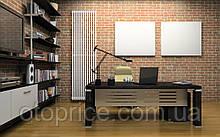 Вертикальный дизайнерский радиатор Praktikum 1 2000/501 Betatherm 12-14 м.кв.