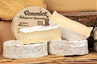 Закваска для сыра Камамбер