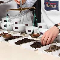 Дегустатор чая (титестер) – особенности профессии, навыки и качества специалистов