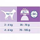 Purina Cat Chow Hairball 400 г сухий корм для котів, фото 2