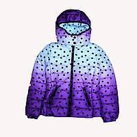 Утепленные  куртки для девочек Glo-Story, Венгрия, фото 1