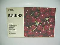 Михеев А.М. и др. Вишня (б/у)., фото 1