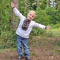 Вишиванка для хлопчика (МВ-140хл), фото 1