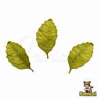 Листья Оливковые из Фоамирана (латекса) 3 см 10 шт/уп