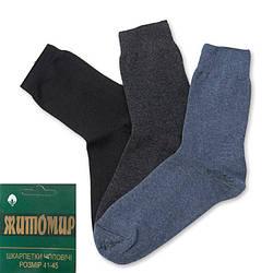 Шкарпетки чоловічі з антибактеріальним ефектом Житомир (Україна) 5C-DRN