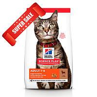 Сухой корм для кошек Hill's Science Plan Feline Adult Lamb 10 кг