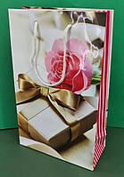 Паперовий пакет подарунковий Середній 17/26/8 (артSV-169) (12 шт)