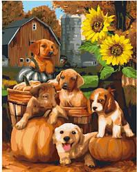 """Картина по номерам """"Собачки у подсолнуха"""" Сложность: 3 (с животными, анималистика, с щенками, щенки, собака, с"""