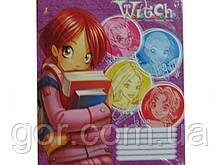 Зошит з малюнком на обкладинці 12листов коса (25 шт)