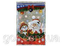 Фольгированный пакет Н.Г (20*30) №28 Дед Мороз и Снеговик (100 шт)