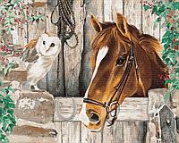 """Акриловая картина по номерам на холсте """"Друзья животные"""" 40х50 см."""