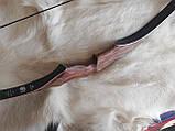 Akusta PARAGON Традиційний лук для стрільби, фото 7