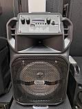 Аккумуляторная беспроводная колонка чемодан Ailiang LiGE-1709, портативная Bluetooth акустика, сабвуфер, фото 7