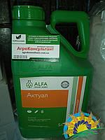 Актуал, 5л (аналог Актеллик) - ФОСФОРОРГАНИЧЕСКИЙ инсектицид (пиримифос-метил 500г/л). ALFA Smart Agro