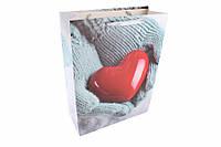 Подарочный пакет 3-79-335