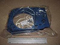 Р/к двигателя ЕВРО (прокладка ГБЦ армиров.) (2 наим.) синий (производство Украина) 740.1003213-21