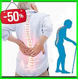 Анти-остеопороз Форте – капли от остеопороза, фото 3