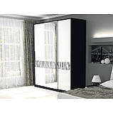 Шкаф-купе с зеркалом в спальню, в прихожую Терра 2,0 TR-20-WB MiroMark белый/черный, фото 3