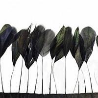 Тесьма перьевая(реснички), цвет Черный, отрезок 0.5м