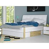 Ліжко двоспальне з м'яким узголів'ям і двома висувними ящиками Флоренція FR-38-WB MiroMark дуб сан, фото 2