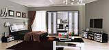 Шафа розпашній з дзеркалами в спальню, в передпокій Віола 6Д VL-16-WB MiroMark білий/чорний, фото 3