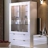 Витрина в гостиную Рома 2Д RM-112-WB MiroMark белый глянец, фото 2