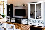 Вітрина у вітальню Терра 1Д TR-111-WB MiroMark білий/чорний, фото 2