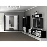 Вітрина у вітальню Віола 2Д VL-112-WB MiroMark білий/чорний, фото 2