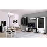 Витрина в гостиную Виола 2Д VL-112-WB MiroMark белый/черный, фото 3