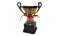 Кубок H713D (металл, пластик, h-17,5см, d чаши-12,5см, золото)