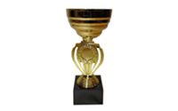 Кубок HQ7408 (металл, пластик, h-18,5см, d чаши-8см, золото)