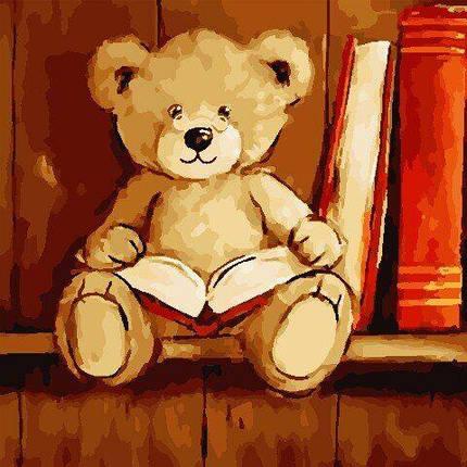 AS0803 Набор для рисования по номерам Мишка с книгой, Без коробки, фото 2